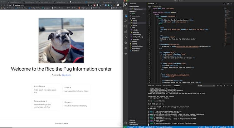 rico and vscode