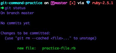 terminal screenshot of git status after git add