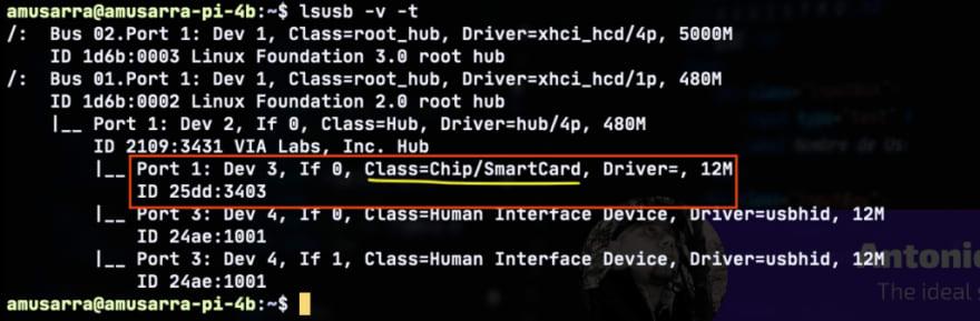 Figura 3 - Identificazione lettore Smart Card tramite comando lsusb