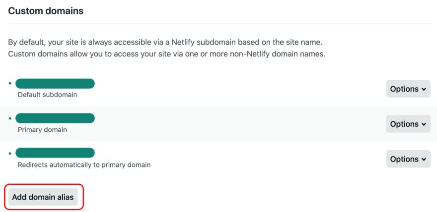 Customs domains settings