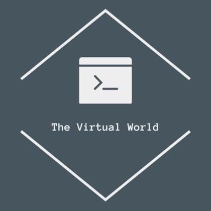 The Virtual World