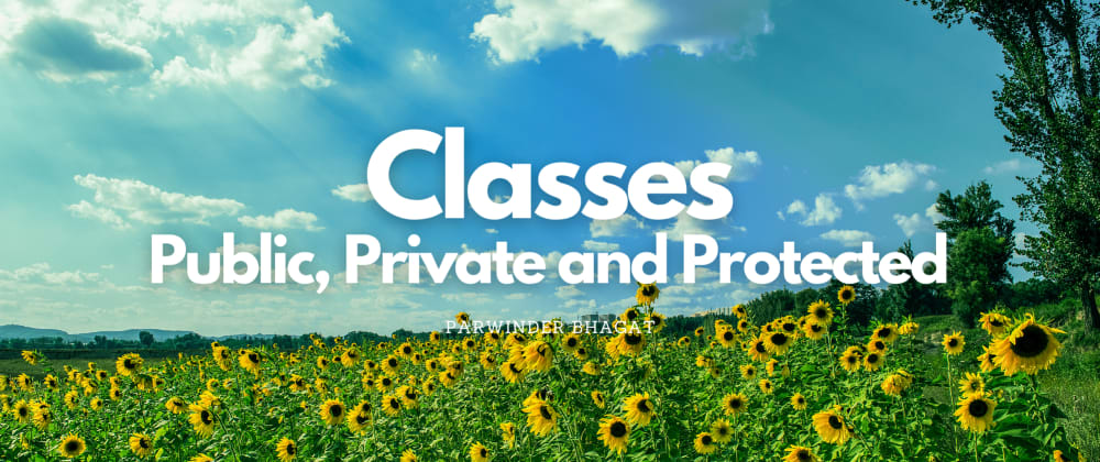 Cover image for Classes in JS: Public, Private and Protected