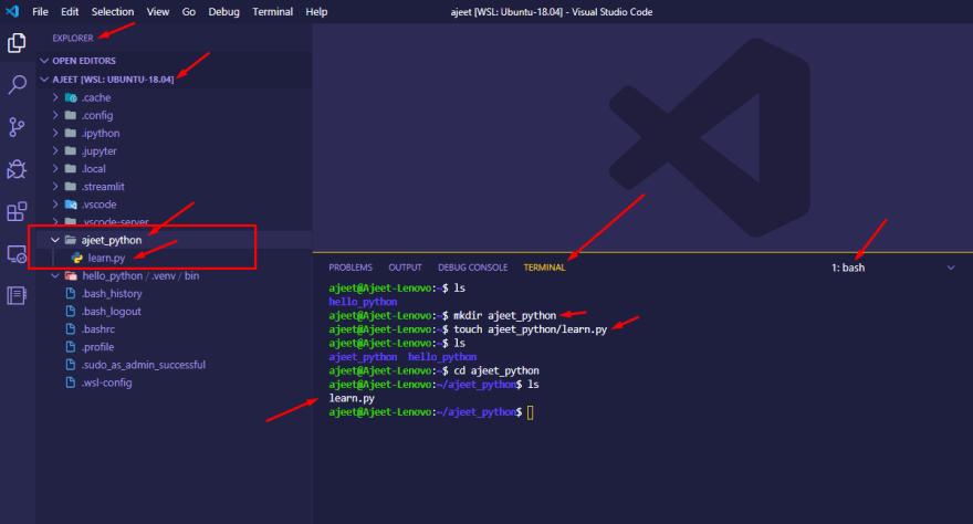 Create a Python file inside WSL