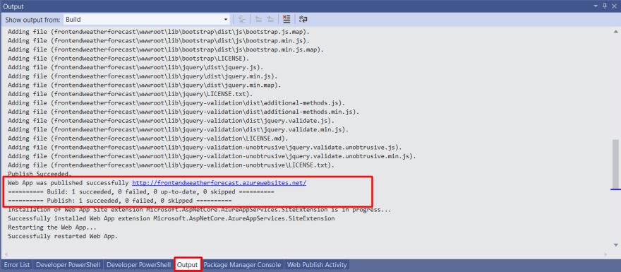 FrontEnd webapp publish output