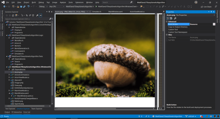 Setting the properties of an image to Resource in Visual Studio 2019.