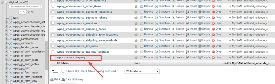 A new custom table shows up in the database of the WordPress website