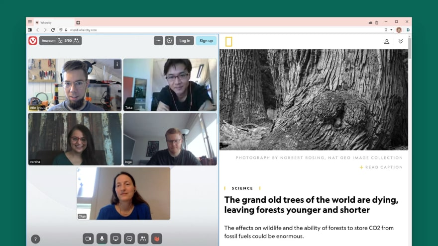 Whereby video conference in Vivaldi browser.