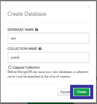 Database Collection name