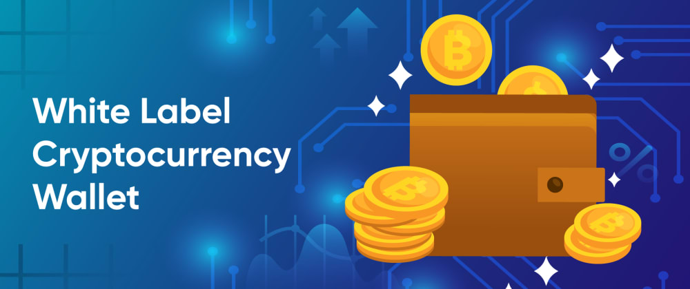 Cover image for Know the Benefits of Customized Cryptocurrency Wallets