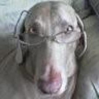 Chas profile picture
