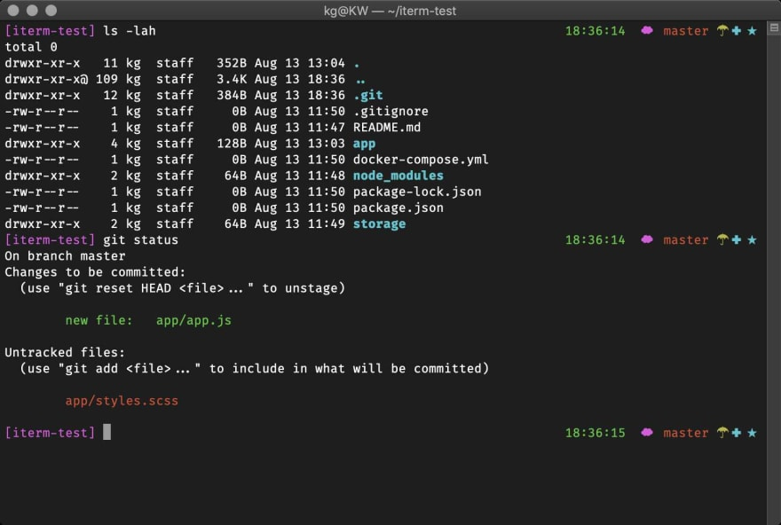 oh-my-zsh screenshot with wedisagree theme