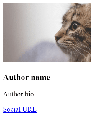 Author Box Elements With Image