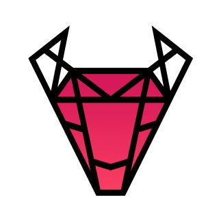 2n IT logo