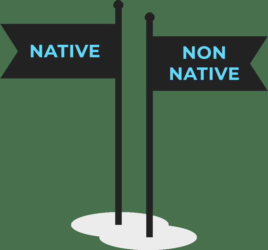 native-vs-non-native