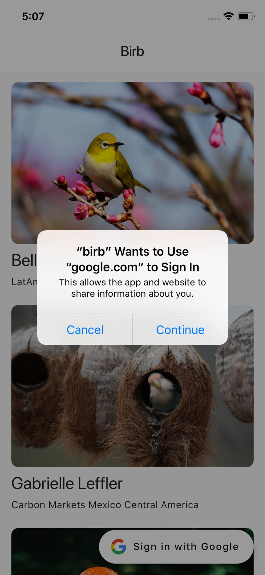 Sign in flow on iOS
