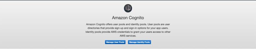 AWS Made Easy | AWS Cognito Choose