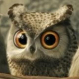 owlypixel profile