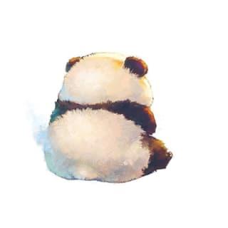 BernieLiu profile picture