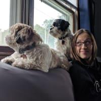 Rachel Groff profile image