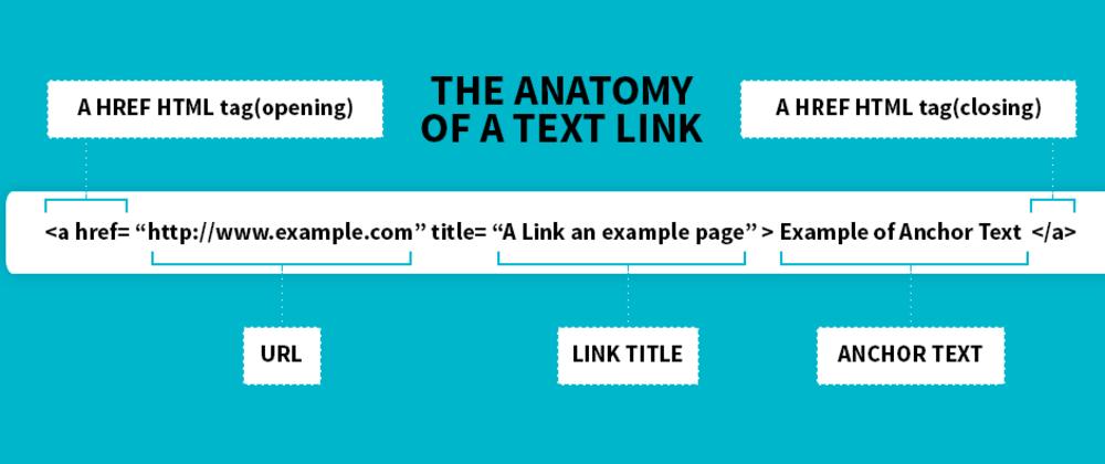 Cover image for TIL - HTML Basics