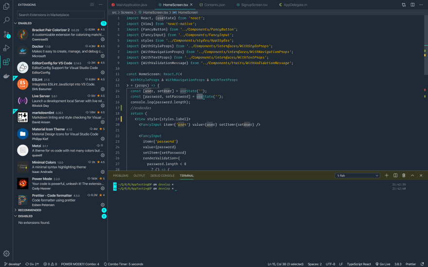 vscode with my installed extensions and term