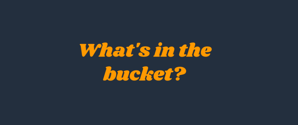 Cover image for What's in the bucket?