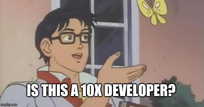 10x dev