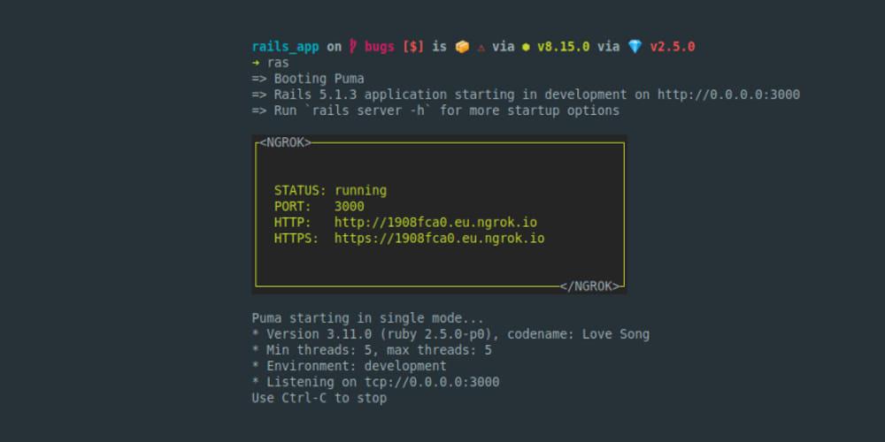 Rails webhook integration development with Ngrok - DEV Community