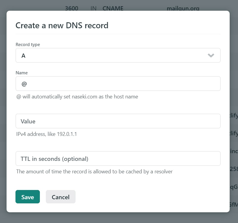Adding a new DNS record to Netlify