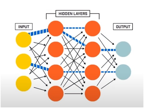 input, hidden, and output layers