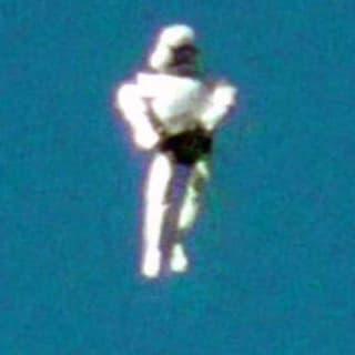 humanoidevolador profile