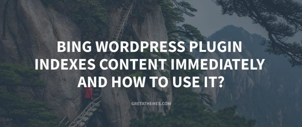 Cover image for Bing WordPress Plugin Indexes Content Immediately and How to use it?