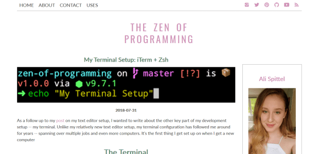 A screenshot of Ali Spittel's post on customising her terminal shell.