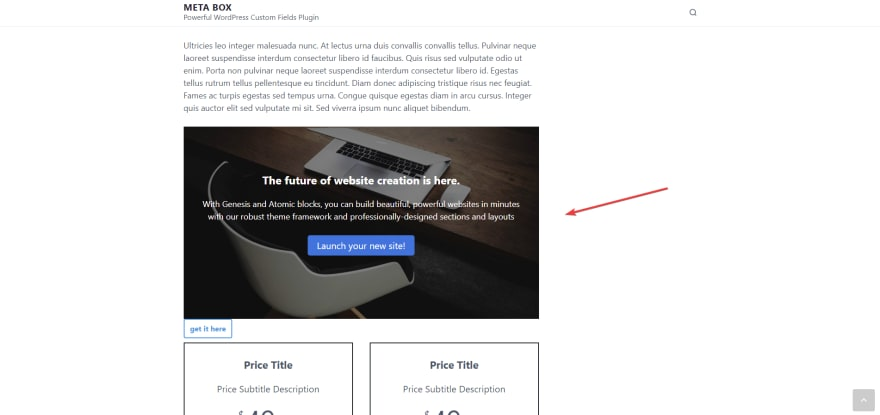 display a full-width layout on the front end of the WordPress website