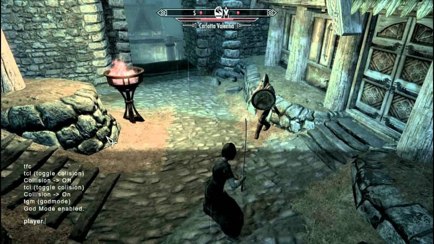 screenshot of Skyrim fight with console cheats enabled
