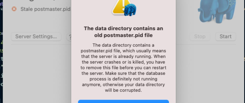 Cover image for The Data Directory Contains an Old postmaster.pid File