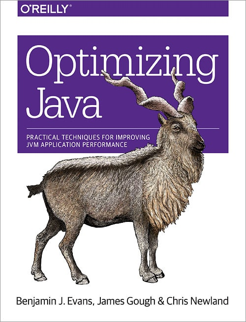 best book to learn JVM and Java performance
