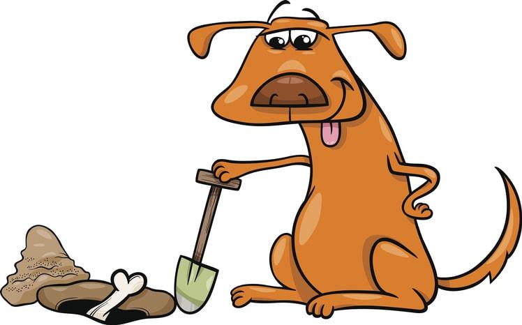 Dog burying a bone