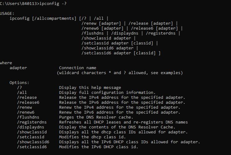 ipconfig-options