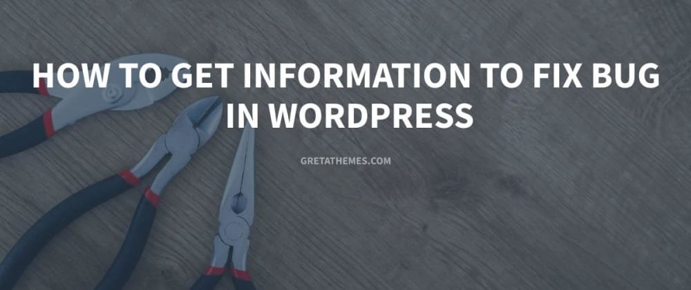 Cover image for How to Get Information to Fix Bug in WordPress