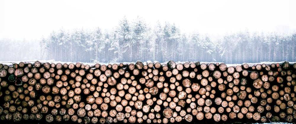 Cover image for Logging Strategies