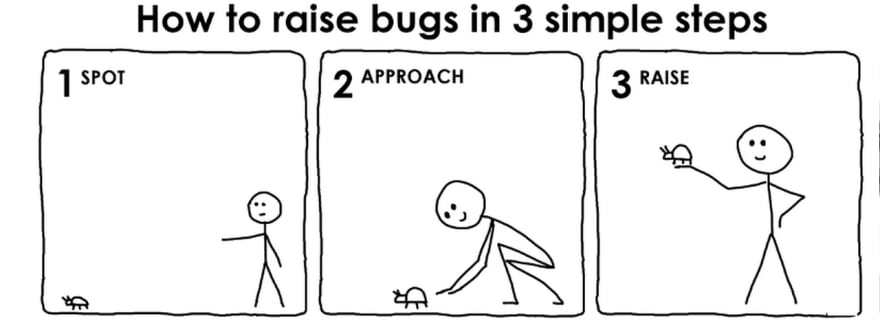 How to raise a bug in three simple steps