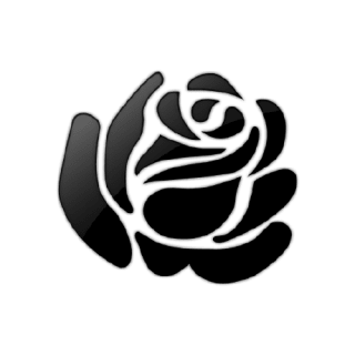 flowerinthenight profile picture