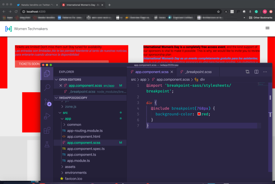 import stylesheet from node_modules