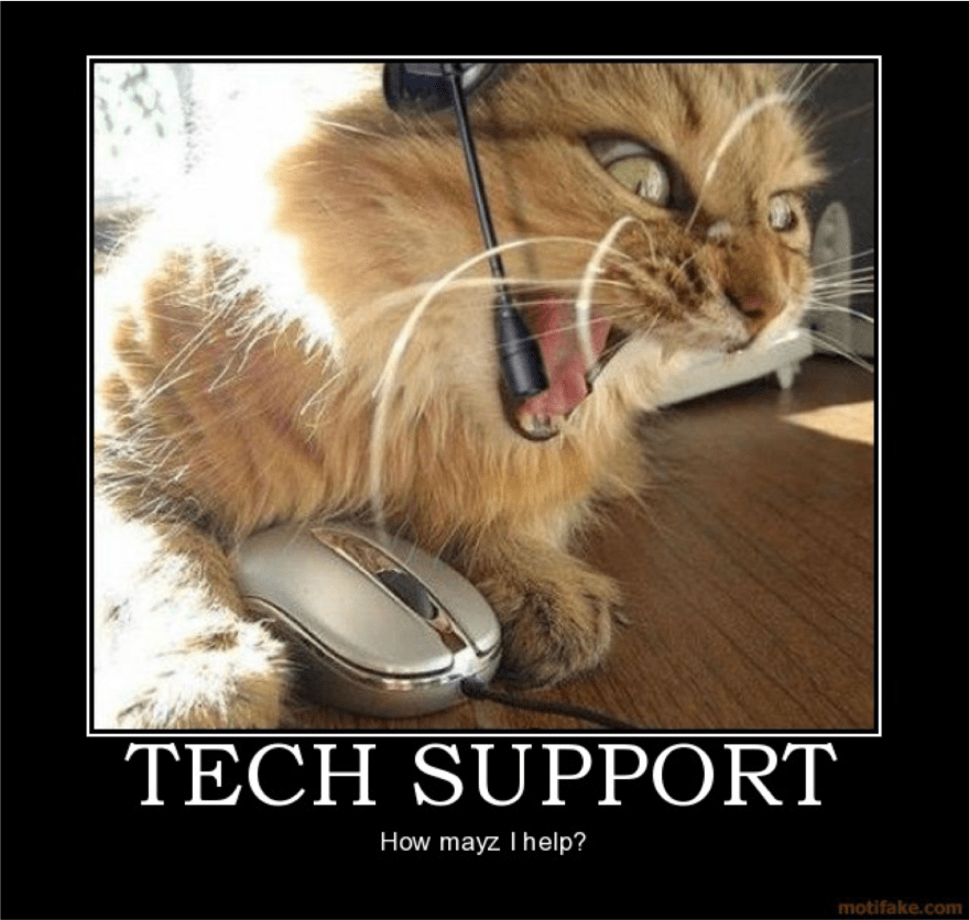 Image of angry cat acting as tech support