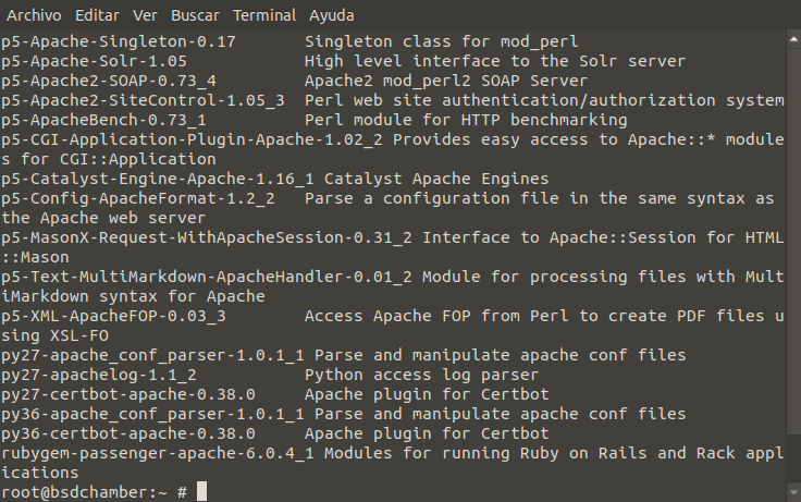 """What results of """"pkg search apache"""""""