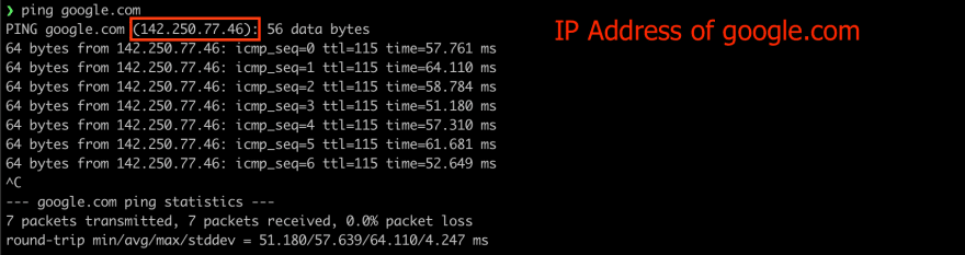 ping command output showing the IP address of website