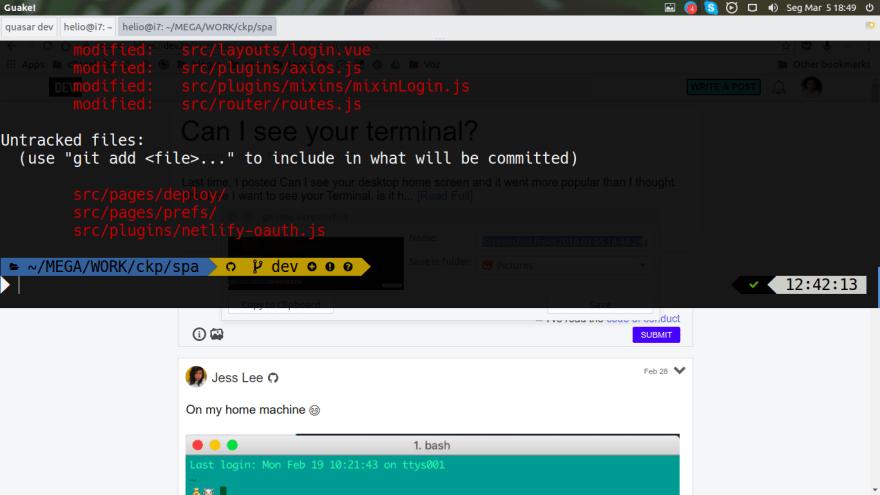 ubuntu-ohmyzsh-and-guake
