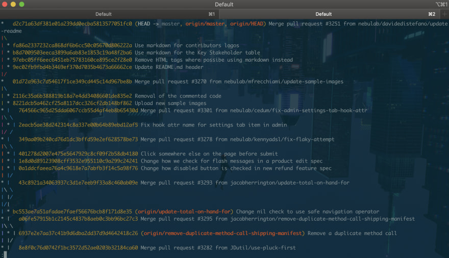 Screenshot of git in my terminal!