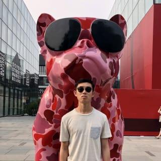 Xinran Wang profile picture